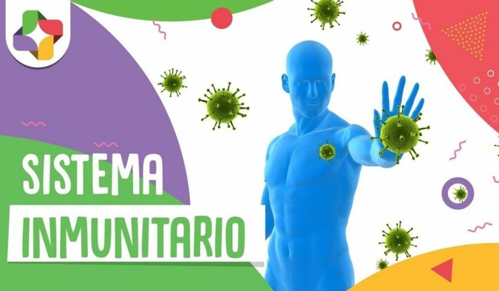 Consejos para mantener sano tu sistema inmunitario