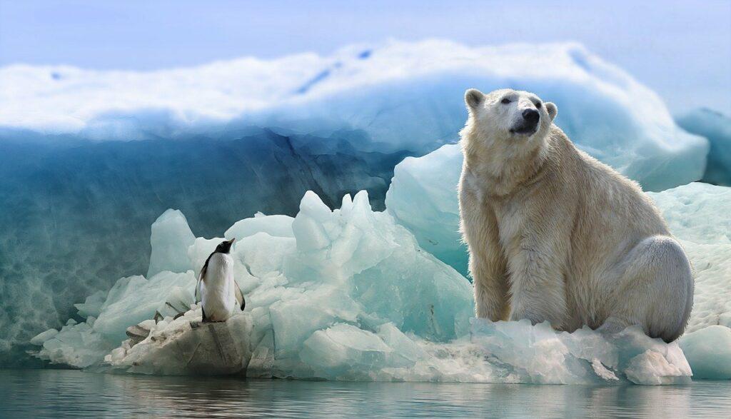 Una ola de calor que provoca derretimiento masivo en el Ártico